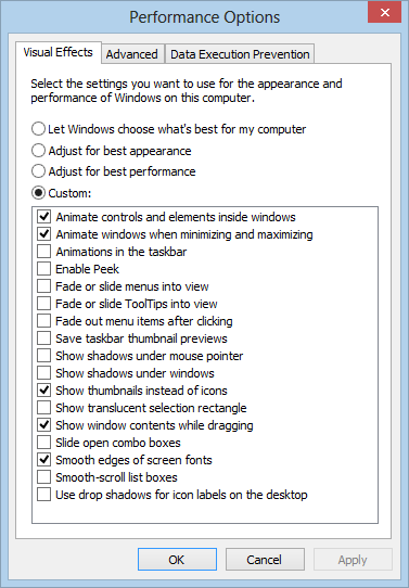 Windows 8 Performance Options (screenshot)